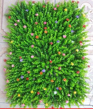 Hình ảnh Cỏ tai chuột đính hoa