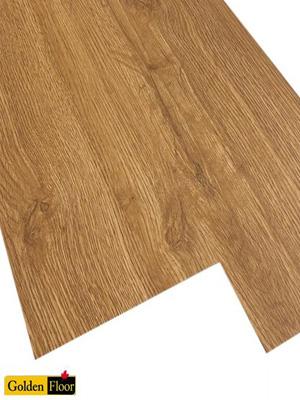 Sàn nhựa Golden DP203