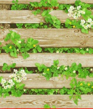 Hình ảnh Giấy dán tường Natural 87020-2