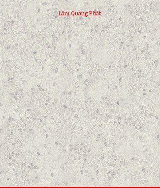 Hình ảnh Giấy dán tường Soho 56053-2