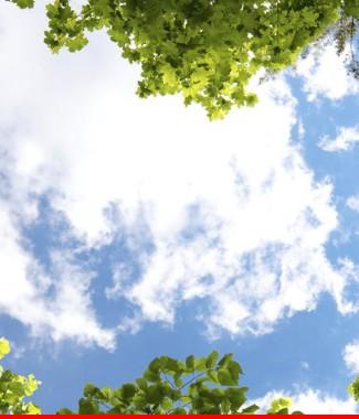 Hình ảnh Tranh dán tường bầu trời CL035