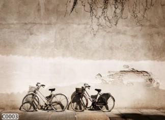 Hình ảnh Tranh dán tường C0003
