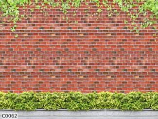 Hình ảnh Tranh dán tường C0062
