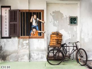 Hình ảnh Tranh dán tường C0110